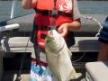 fishingcrabbingnoosarivertours-www-noosariverandfishingadventures-com-au0