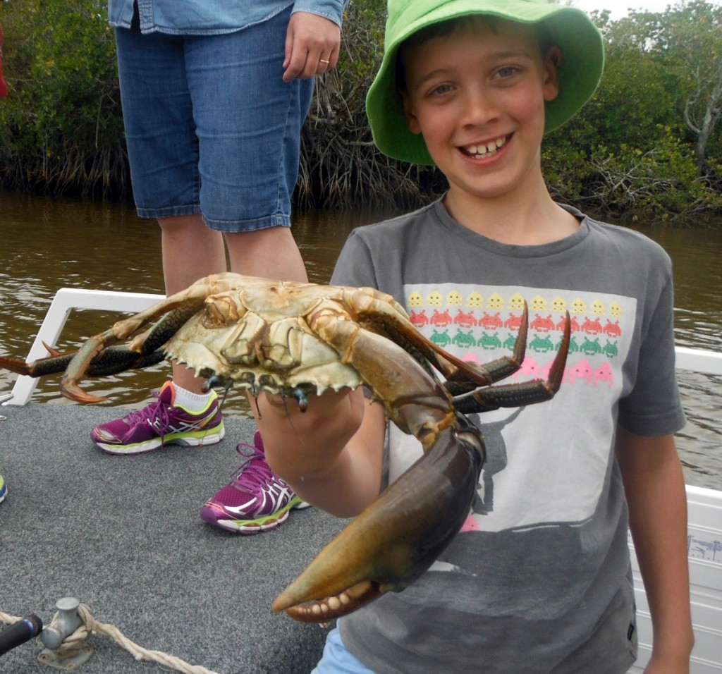 nothing beats a feed of mud crabs while your fishing. Black Bedroom Furniture Sets. Home Design Ideas